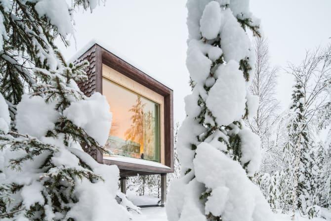 artic tree house